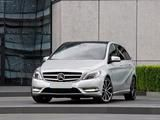 Digichip Mercedes-Benz B 2011 <